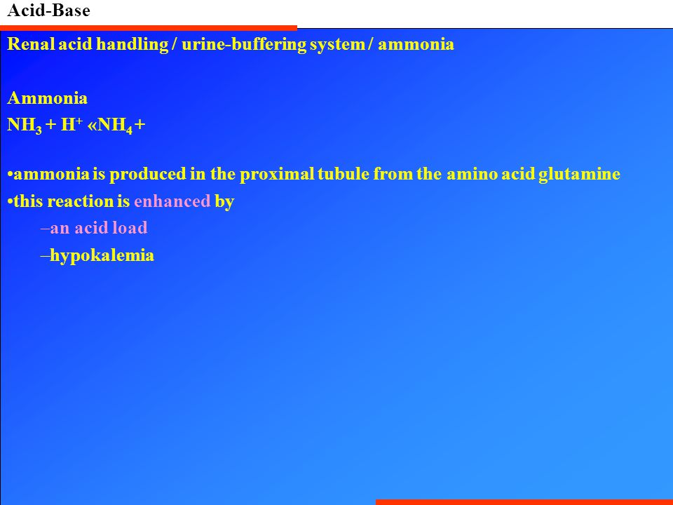 Acid-Base Renal acid handling / urine-buffering system / ammonia Ammonia NH 3 + H + «NH 4 + ammonia is produced in the proximal tubule from the amino acid glutamine this reaction is enhanced by –an acid load –hypokalemia
