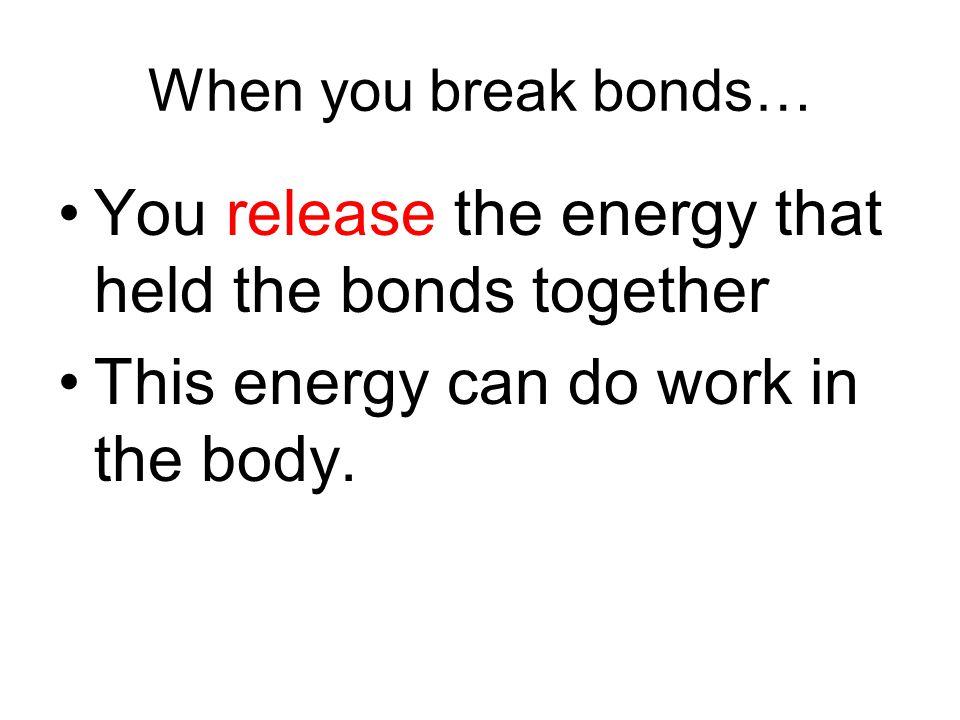 Explain the energy transfers: