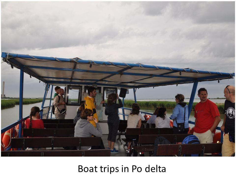 Boat trips in Po delta