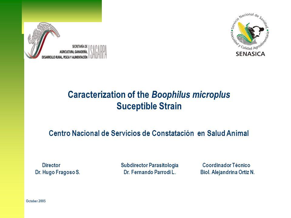 Caracterization of the Boophilus microplus Suceptible Strain Centro Nacional de Servicios de Constatación en Salud Animal Director Subdirector Parasitología Coordinador Técnico Dr.