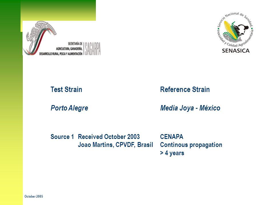Test Strain Reference Strain Porto Alegre Media Joya - México Source 1 Received October 2003CENAPA Joao Martins, CPVDF, Brasil Continous propagation > 4 years October 2005