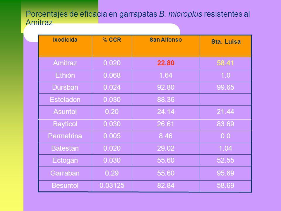 Porcentajes de eficacia en garrapatas B.