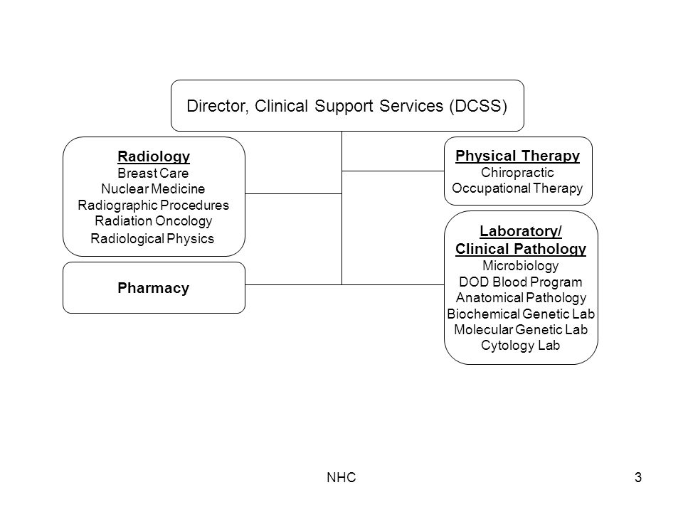 NHC3 Physical Therapy Chiropractic Occupational Therapy Pharmacy Radiology Breast Care Nuclear Medicine Radiographic Procedures Radiation Oncology Radiological Physics Laboratory/ Clinical Pathology Microbiology DOD Blood Program Anatomical Pathology Biochemical Genetic Lab Molecular Genetic Lab Cytology Lab Director, Clinical Support Services (DCSS)