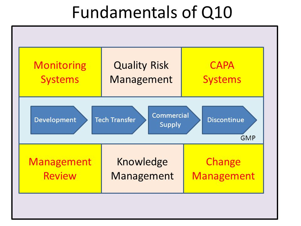 manag Fundamentals of Q10 DevelopmentTech TransferDiscontinue Commercial Supply Monitoring Systems CAPA Systems Management Review Change Management Quality Risk Management Knowledge Management GMP