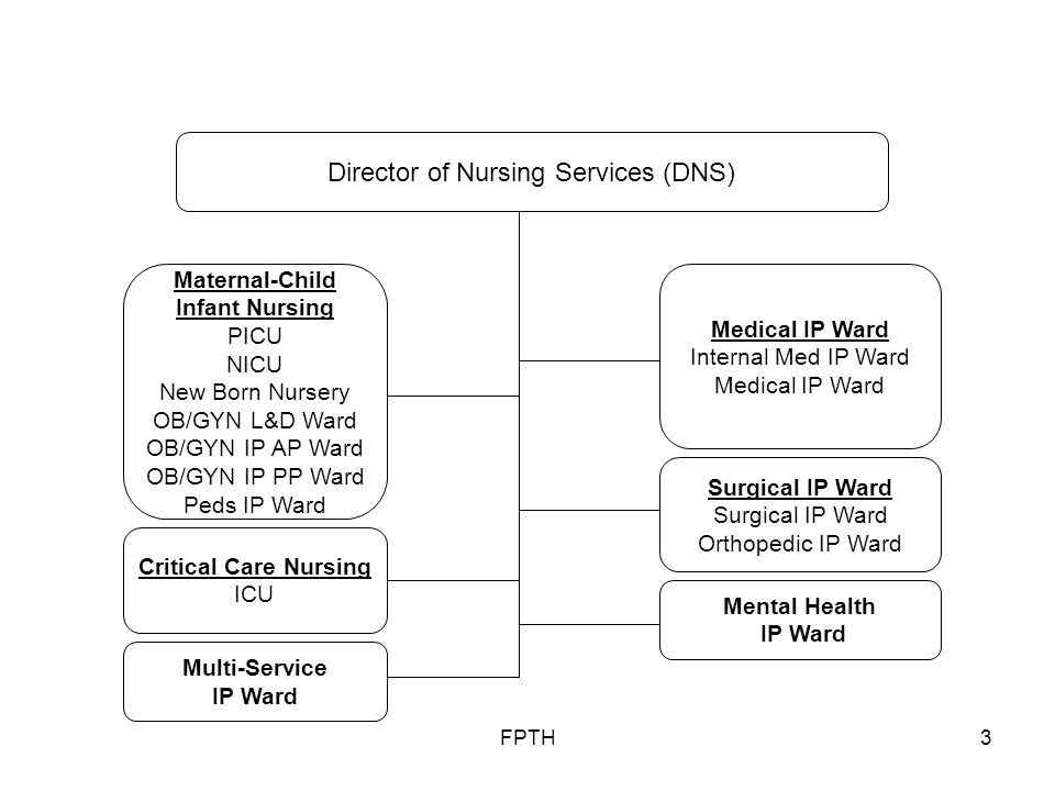 FPTH3 Medical IP Ward Internal Med IP Ward Medical IP Ward Maternal-Child Infant Nursing PICU NICU New Born Nursery OB/GYN L&D Ward OB/GYN IP AP Ward OB/GYN IP PP Ward Peds IP Ward Critical Care Nursing ICU Surgical IP Ward Orthopedic IP Ward Director of Nursing Services (DNS) Mental Health IP Ward Multi-Service IP Ward