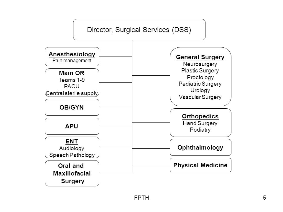 FPTH6 Clinical Nutritional Services Physical Therapy Chiropractic Occupational Therapy Pharmacy In-patient Pharmacy Radiology Cross Section Images Nuclear Medicine Radiographic Procedures Radiation Oncology Radiological Physics Laboratory/ Clinical Pathology Microbiology DOD Blood Program Anatomical Pathology Biochemical Genetic Lab Molecular Genetic Lab Cytology Lab Director, Clinical Support Services (DCSS) Breast Care
