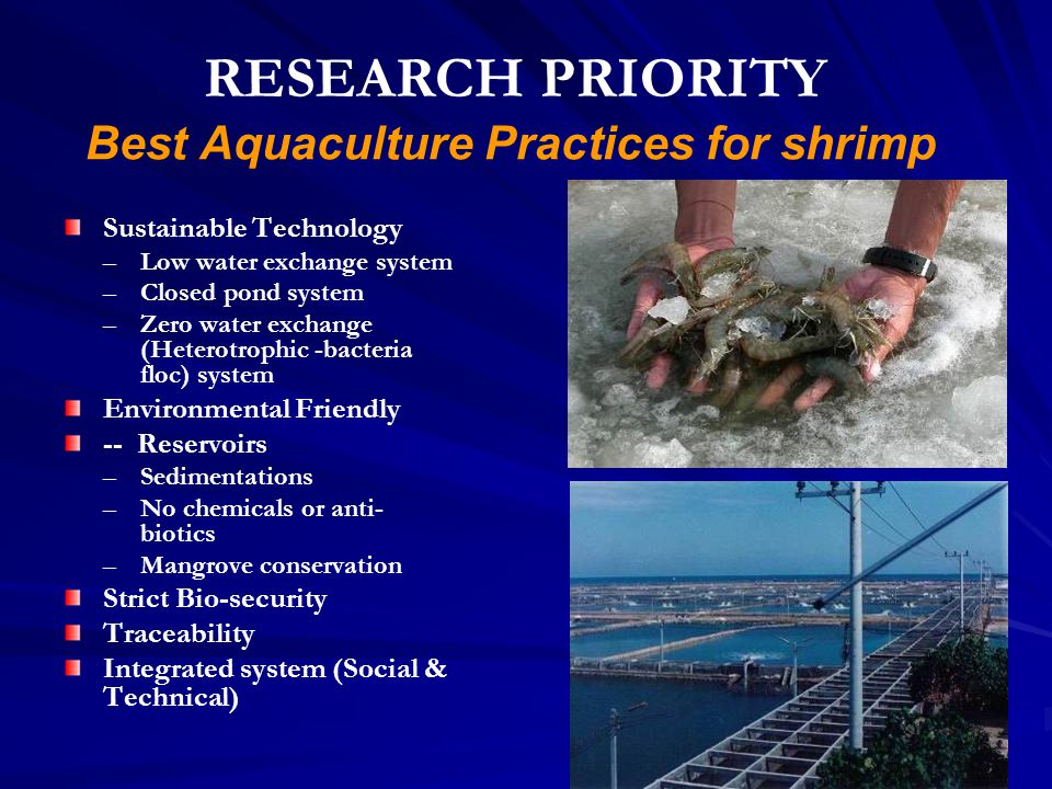 Best Aquaculture Practices for shrimp Sustainable Technology – –Low water exchange system – –Closed pond system – –Zero water exchange (Heterotrophic -bacteria floc) system Environmental Friendly -- Reservoirs – –Sedimentations – –No chemicals or anti- biotics – –Mangrove conservation Strict Bio-security Traceability Integrated system (Social & Technical) RESEARCH PRIORITY