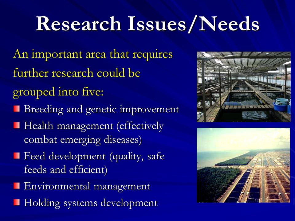 Research Issues/Needs An important area that requires further research could be grouped into five: Breeding and genetic improvement Health management (effectively combat emerging diseases) Feed development (quality, safe feeds and efficient) Environmental management Holding systems development