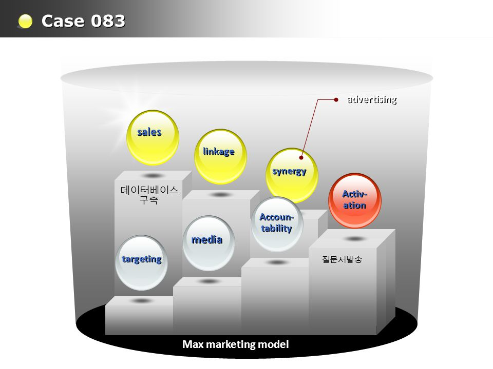 Case 083 Max marketing model 질문서발송 데이터베이스 구축 synergy linkage sales Activ- ation Activ- ation advertising Accoun- tability Accoun- tability media targeting