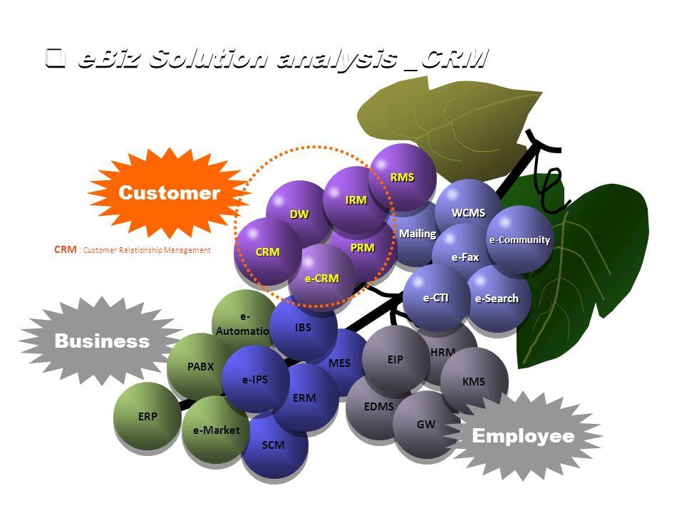 MailingMailing Business SCM e- Automation e- Automation PABX e-Market ERP MES IBS EDMS Group D GW HRM PRMPRM DWDW IRMIRM KMS EIP WCMSWCMS RMSRMS ERM e-IPS e-Faxe-Fax e-Searche-Search e-CTIe-CTI e-Community Employee Customer  eBiz Solution analysis _CRM CRM : Customer Relationship Management e-CRMe-CRM CRMCRM