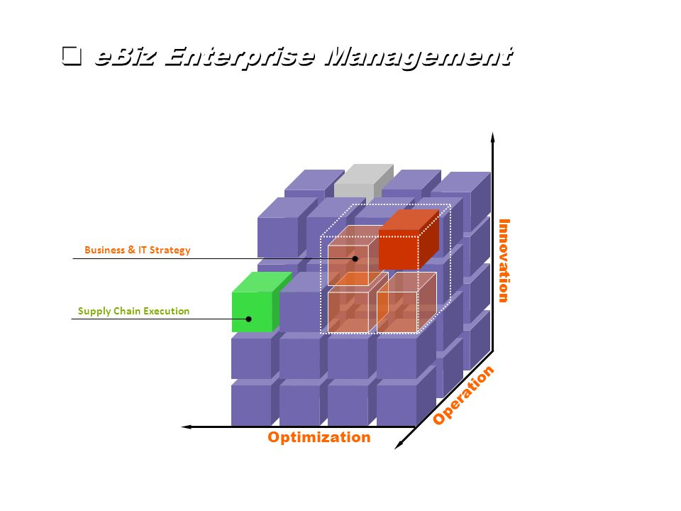 Innovation Operation Optimization Business & IT Strategy Supply Chain Execution  eBiz Enterprise Management