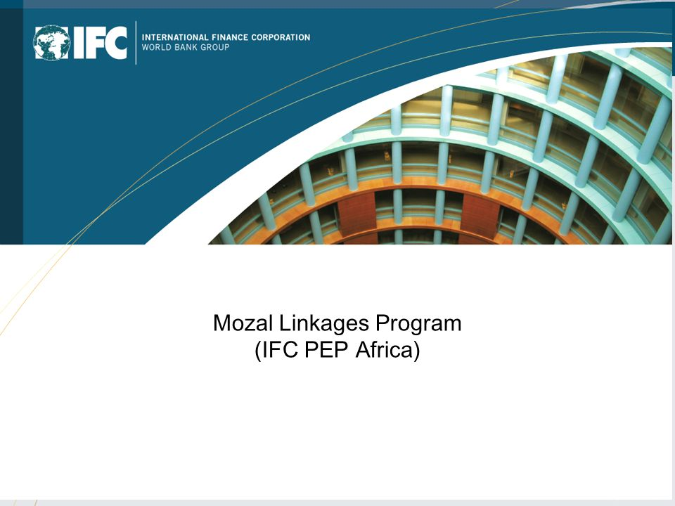 Mozal Linkages Program (IFC PEP Africa)