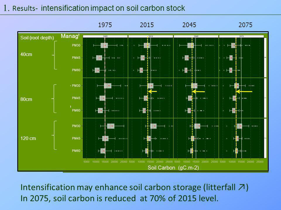 Soil (root depth) 40cm 80cm 120 cm Effect is stronger in fertile sites and humid climate 1975 2015 2045 2075 Biomass carbon stock depleted by 30 % in intensified landscapes Manag t  Results- intensification impact on standing biomass