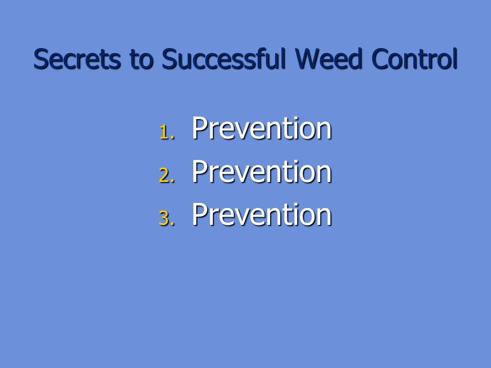 Secrets to Successful Weed Control 1. Prevention 2. Prevention 3. Prevention
