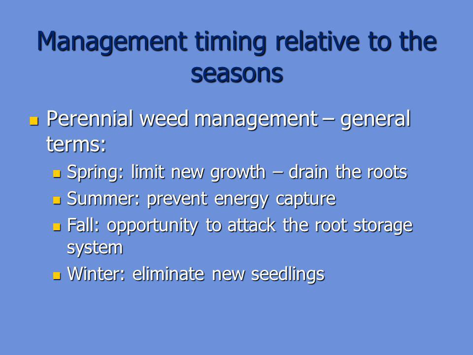 Management timing relative to the seasons Perennial weed management – general terms: Perennial weed management – general terms: Spring: limit new growth – drain the roots Spring: limit new growth – drain the roots Summer: prevent energy capture Summer: prevent energy capture Fall: opportunity to attack the root storage system Fall: opportunity to attack the root storage system Winter: eliminate new seedlings Winter: eliminate new seedlings