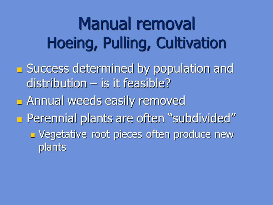 Manual removal Hoeing, Pulling, Cultivation Success determined by population and distribution – is it feasible.