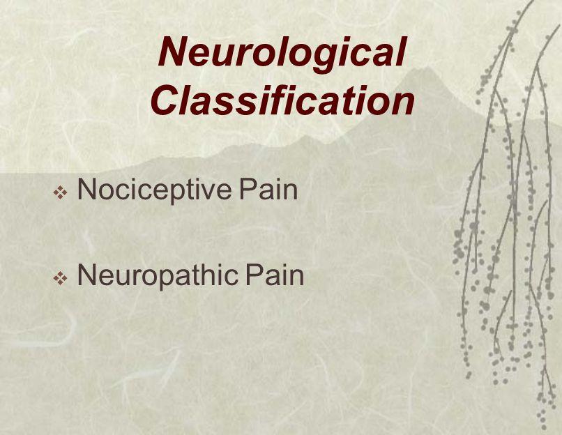 Neurological Classification  Nociceptive Pain  Neuropathic Pain