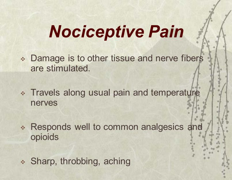 Nociceptive Pain  Damage is to other tissue and nerve fibers are stimulated.  Travels along usual pain and temperature nerves  Responds well to com