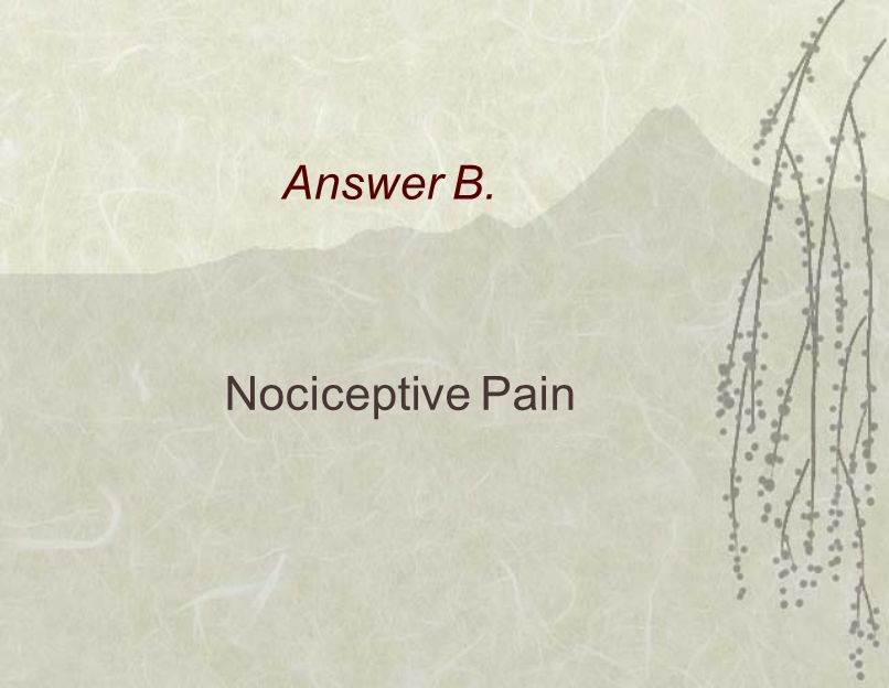 Answer B. Nociceptive Pain