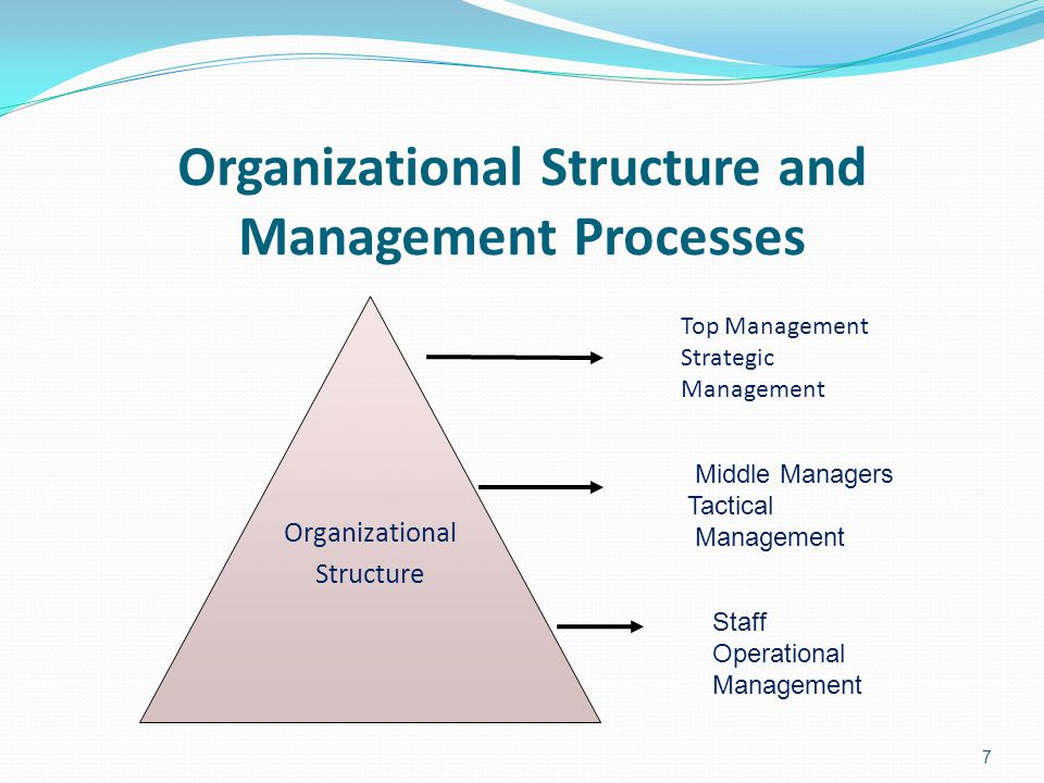 Organizational Structure and Management Processes Organizational Structure 7 Top Management Strategic Management Middle Managers Tactical Management S