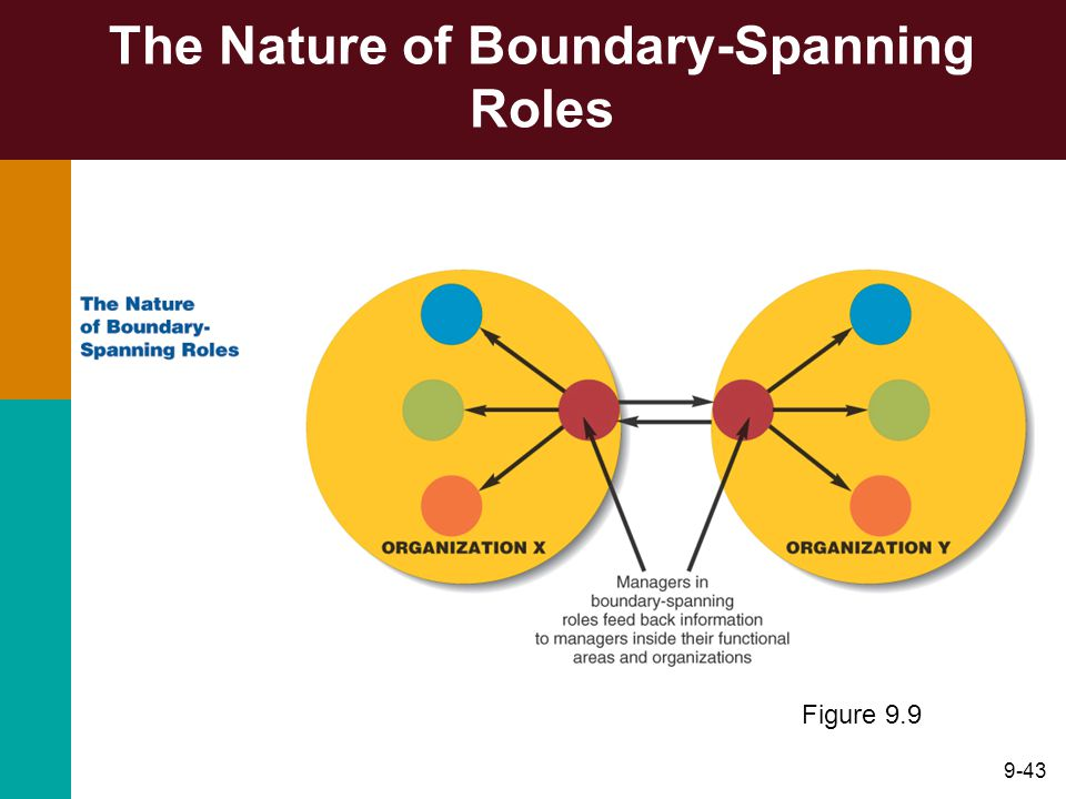 9-43 The Nature of Boundary-Spanning Roles Figure 9.9