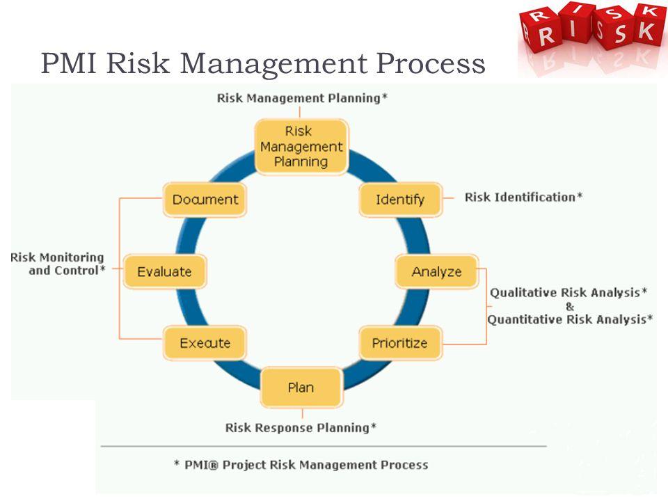PMI Risk Management Process