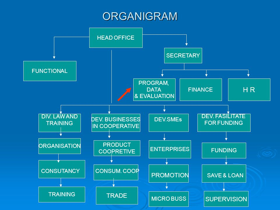 ORGANIGRAM HEAD OFFICE SECRETARY PROGRAM, DATA & EVALUATION FINANCE DIV.