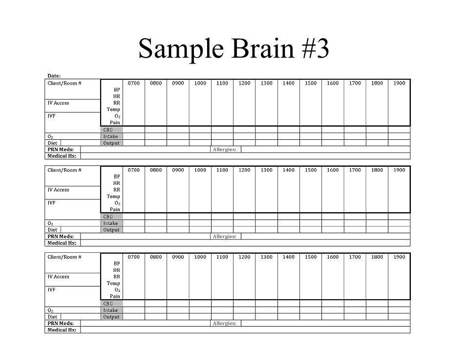 Sample Brain #3