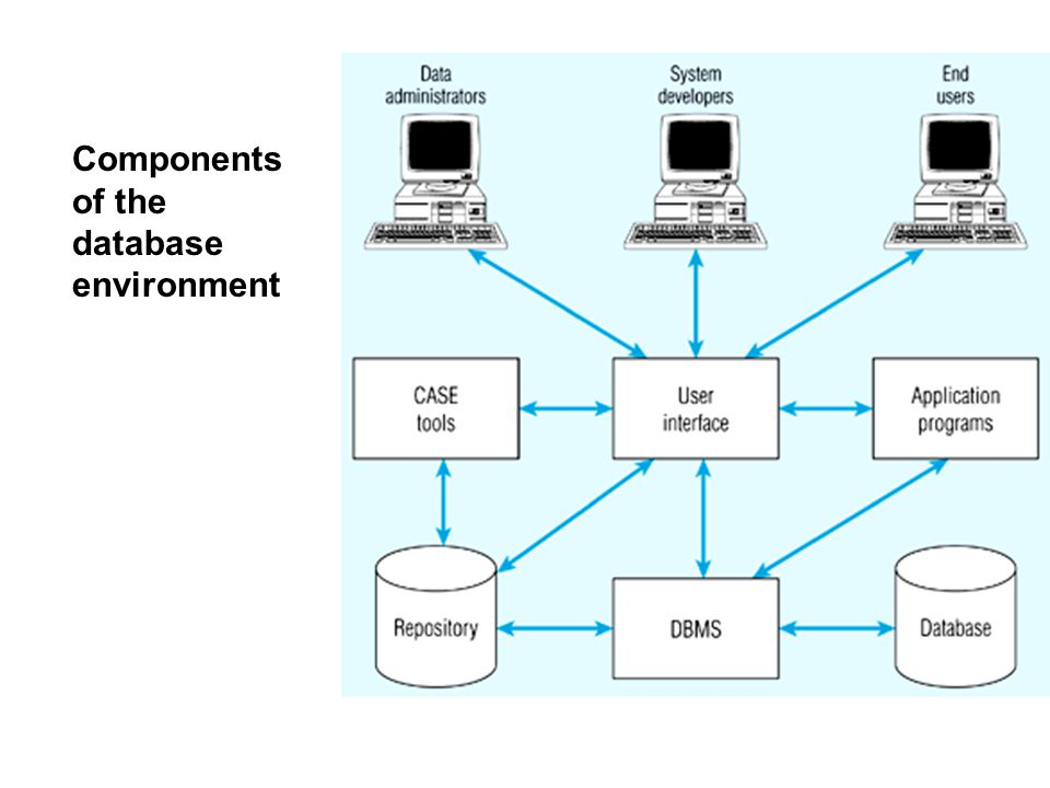 Components of the database environment Application Programs – software used to create and maintain the database and provide information to users. User