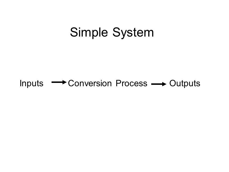 Simple System InputsConversion ProcessOutputs