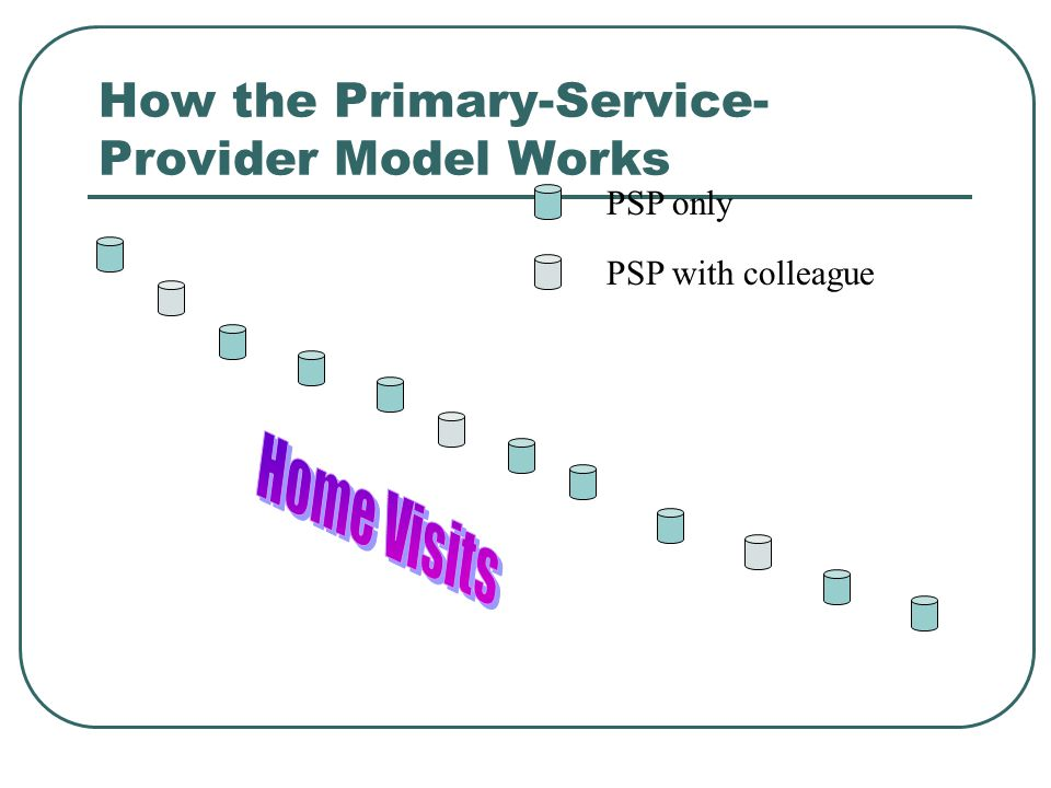 How the Primary-Service- Provider Model Works PSP only PSP with colleague