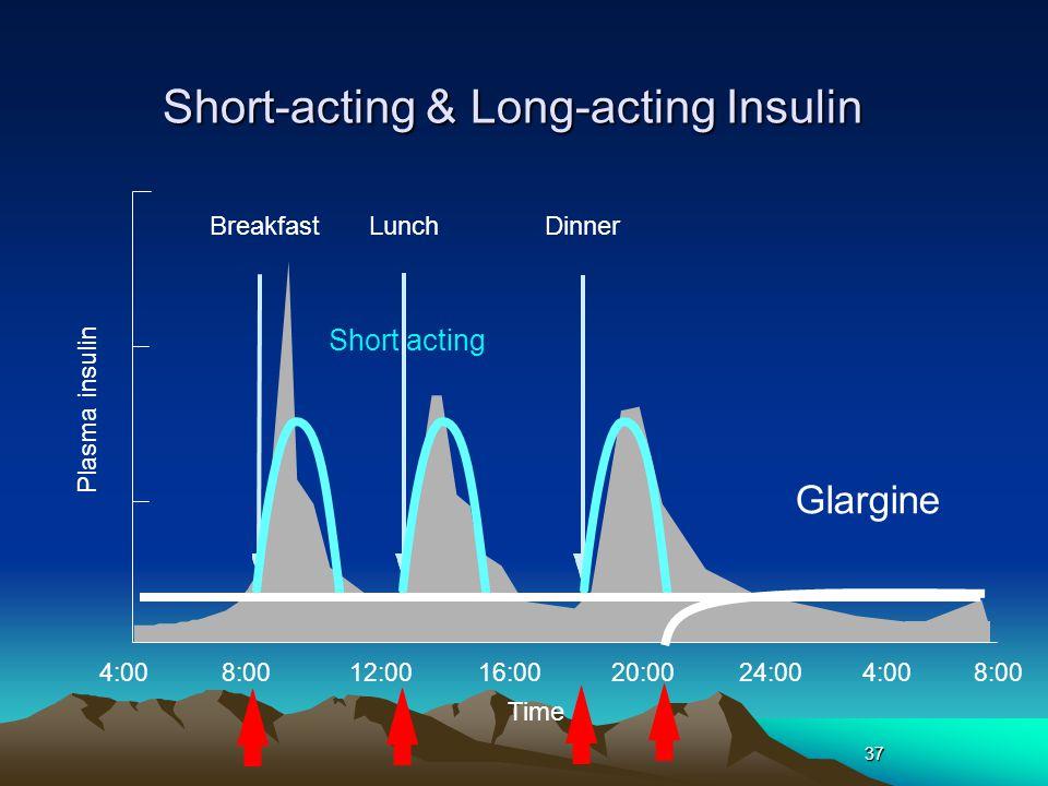 37 4:0016:0020:0024:004:00 BreakfastLunchDinner 8:00 12:008:00 Time Glargine Short acting Plasma insulin Short-acting & Long-acting Insulin