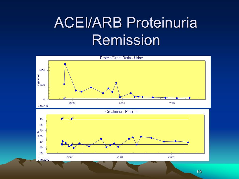 68 ACEI/ARB Proteinuria Remission H L H L 30 40 50 60 70 80 90 2000 Jan 2000 20012002 Creatinine - Plasma umol/L H 0 500 1000 2000 Jan 2000 20012002 P