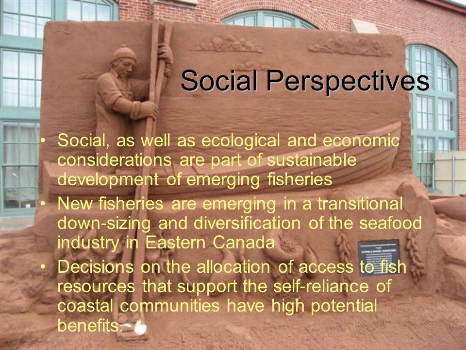 Social Perspectives Social, as well as ecological and economic considerations are part of sustainable development of emerging fisheries New fisheries are emerging in a transitional down-sizing and diversification of the seafood industry in Eastern Canada Decisions on the allocation of access to fish resources that support the self-reliance of coastal communities have high potential benefits.