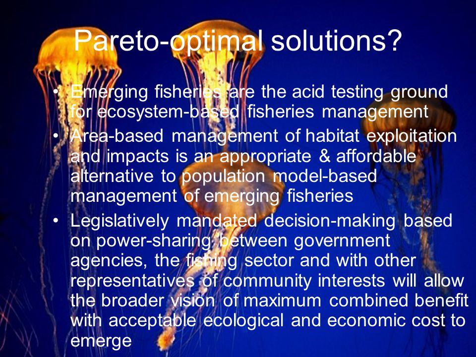 Pareto-optimal solutions.