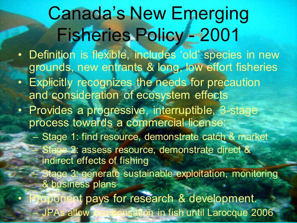 Canada's New Emerging Fisheries Policy - 2001 Definition is flexible, includes 'old' species in new grounds, new entrants & long, low effort fisheries Explicitly recognizes the needs for precaution and consideration of ecosystem effects Provides a progressive, interruptible, 3-stage process towards a commercial license: –Stage 1: find resource, demonstrate catch & market –Stage 2: assess resource, demonstrate direct & indirect effects of fishing –Stage 3: generate sustainable exploitation, monitoring & business plans Proponent pays for research & development.