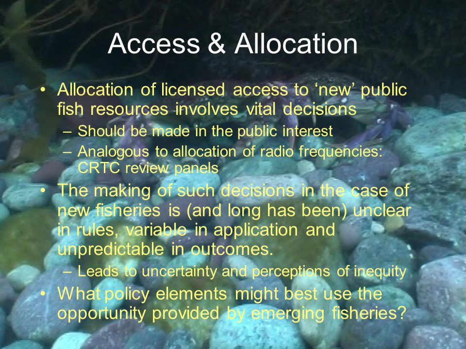 Access & Allocation Allocation of licensed access to 'new' public fish resources involves vital decisions –Should be made in the public interest –Analogous to allocation of radio frequencies: CRTC review panels The making of such decisions in the case of new fisheries is (and long has been) unclear in rules, variable in application and unpredictable in outcomes.