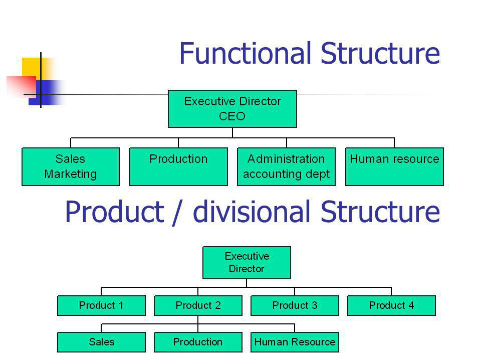 Functional Structure Product / divisional Structure