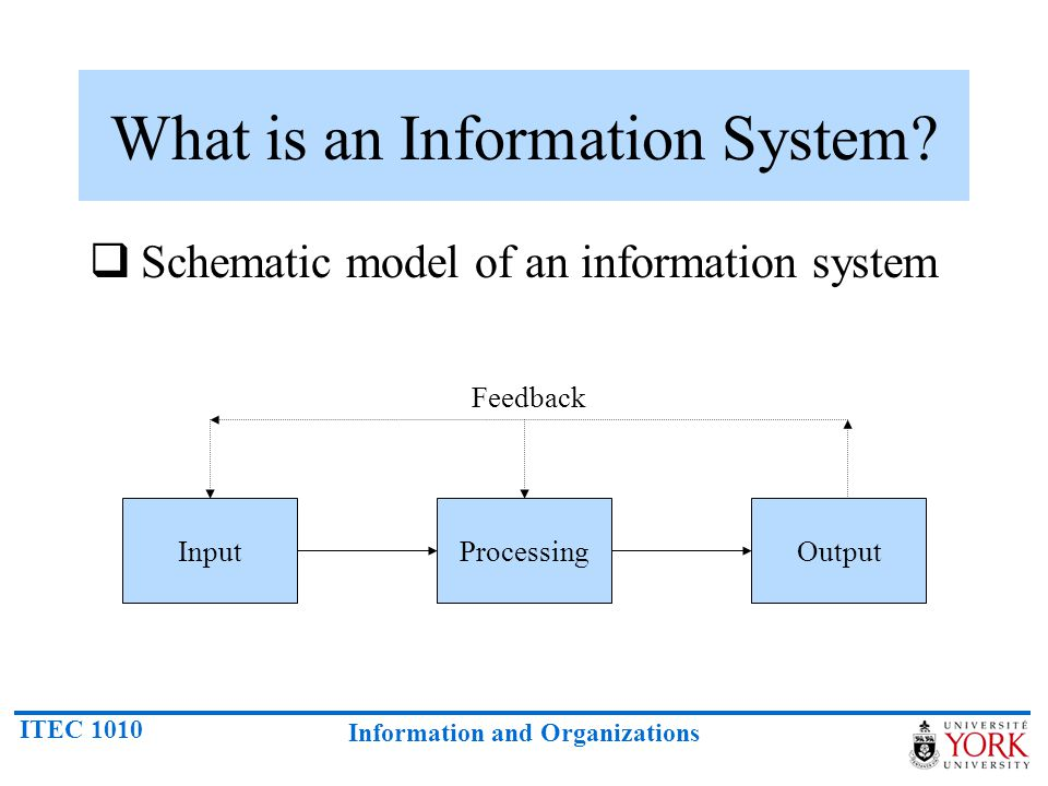 ITEC 1010 Information and Organizations What is an Information System.