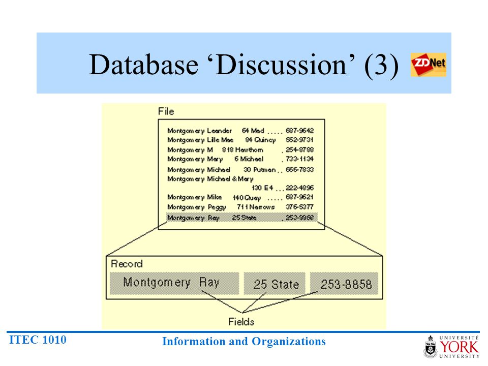 ITEC 1010 Information and Organizations Database 'Discussion' (3)