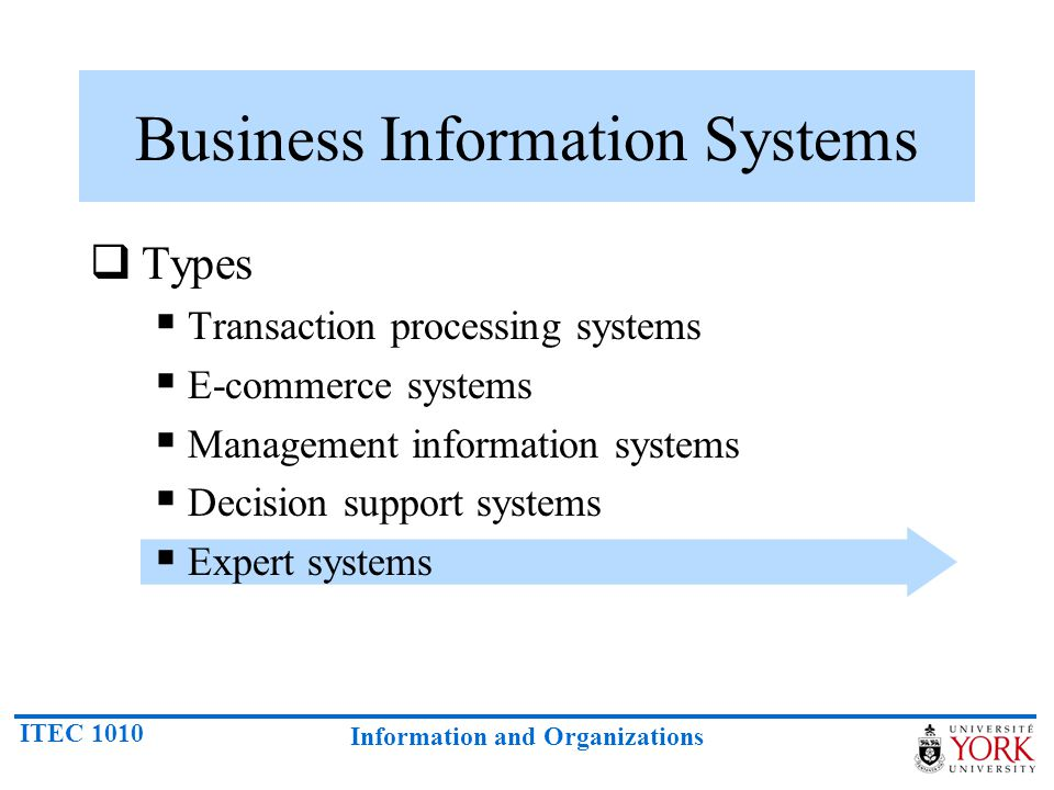 ITEC 1010 Information and Organizations Business Information Systems  Types  Transaction processing systems  E-commerce systems  Management information systems  Decision support systems  Expert systems
