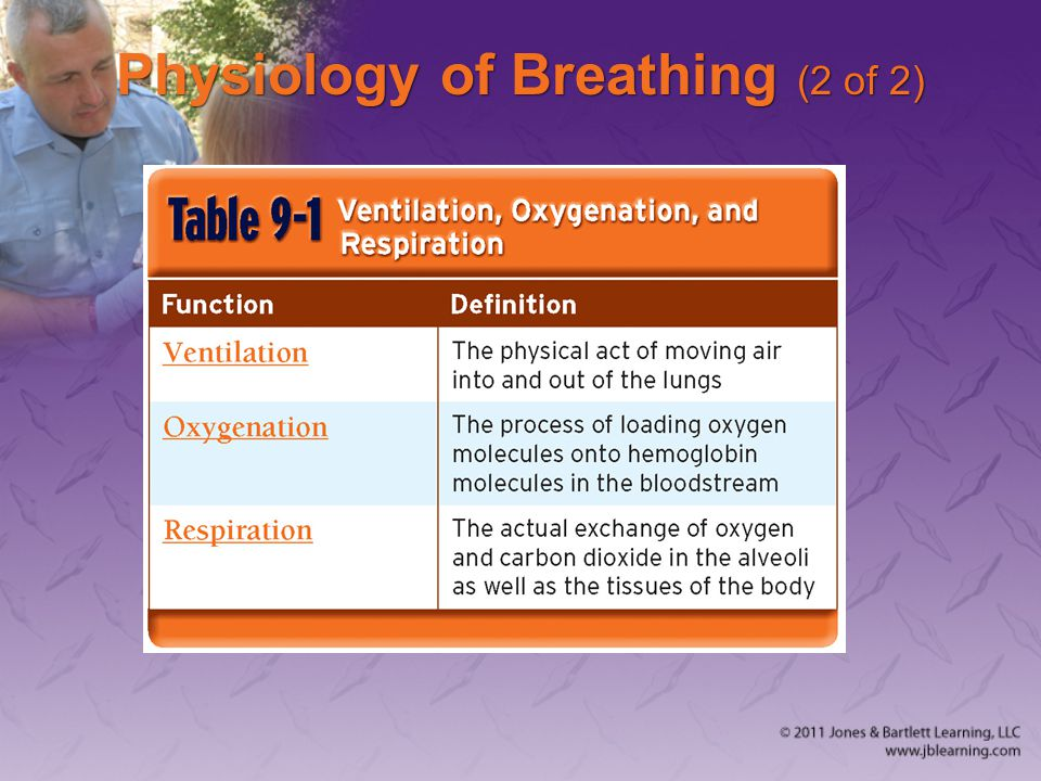 Physiology of Breathing (2 of 2)