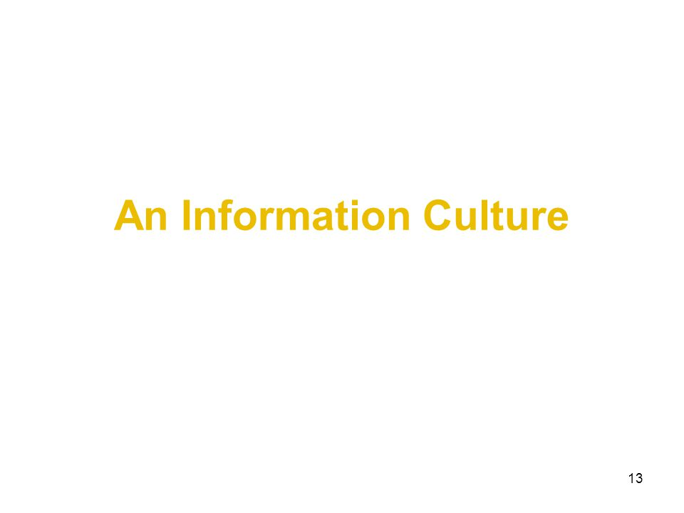13 An Information Culture