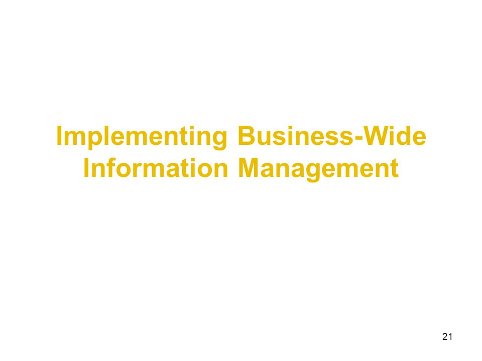 21 Implementing Business-Wide Information Management