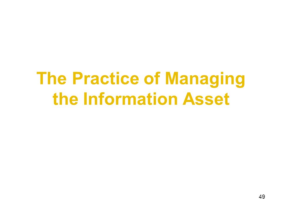 49 The Practice of Managing the Information Asset