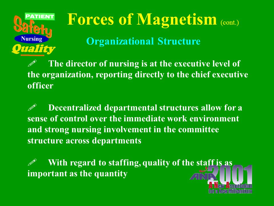 Forces of Magnetism ! Leaders are perceived as knowledgeable, strong, risk- takers who follow a meaningful philosophy that is made explicit in the day