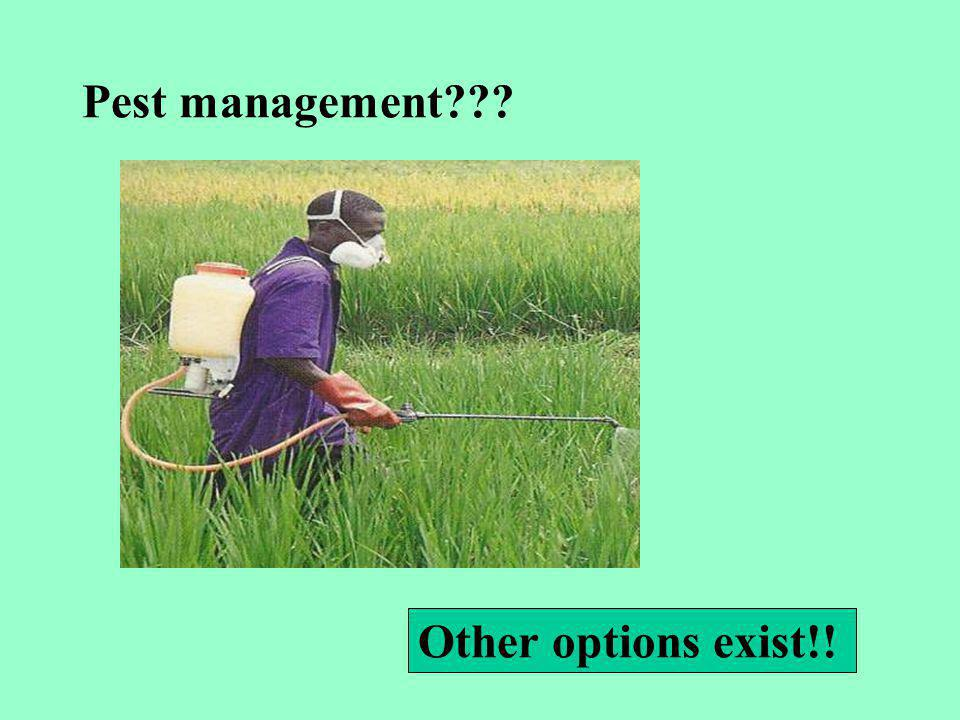 Pest management Other options exist!!