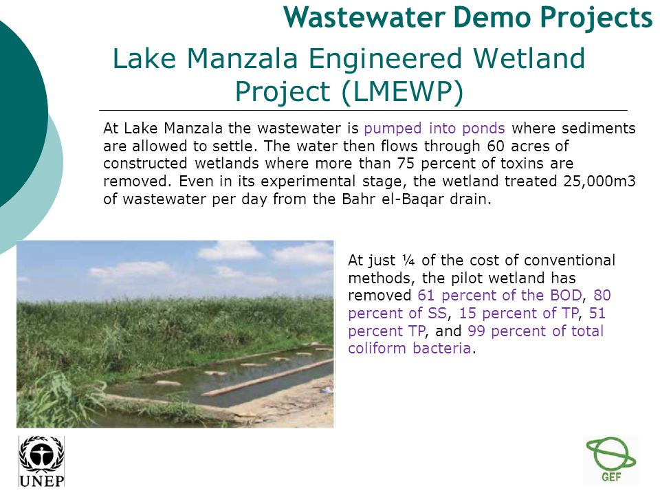 At Lake Manzala the wastewater is pumped into ponds where sediments are allowed to settle.