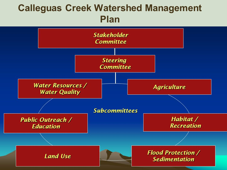 StakeholderCommittee SteeringCommittee Public Outreach / Education Subcommittees Water Resources / Water Quality Habitat / Recreation Land Use Flood Protection / Sedimentation Agriculture Calleguas Creek Watershed Management Plan