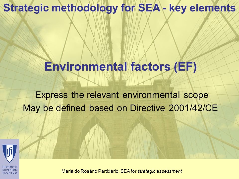 Maria do Rosário Partidário, SEA for strategic assessment Strategic Issues or Drivers Express the intended strategy which the plan, policy or programme shapes Strategic methodology for SEA - key elements